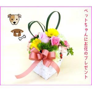 ペットのためのお祝い、お供え用 生花アレンジメント 季節の新鮮なお花で作る、 まるいラウンドのアレン...