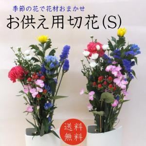 商品について:季節の色花をメインにしたお墓・お仏壇用の切り花です。        お花の種類は仕入れ...