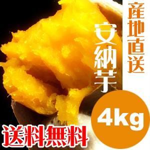 種子島産 安納芋 Mサイズ 送料無料 4kg...
