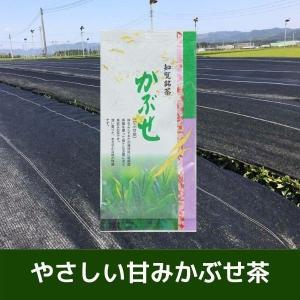 知覧銘茶 かぶせ 100g (日本茶・かぶせ茶・緑茶・かごしま茶・鹿児島県産)