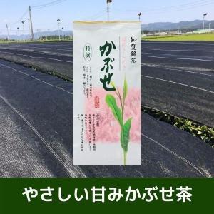 知覧銘茶 特選かぶせ 100g (日本茶・かぶせ茶・緑茶・かごしま茶・鹿児島県産)