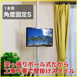 壁掛け風 壁寄せテレビスタンド 12-26V型対応 エアーポール 1本タイプ 角度固定S シルバー ap-110 エモーションズ kagu-11myroom