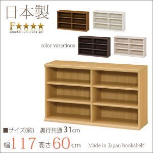 エースラック カラーラック おしゃれ 日本製 本棚 書棚 約幅120 奥行30 高さ60cm デスク下収納 小型本棚 ミニ本棚 子供 本箱 シェルフ 棚 ラック 本箱 定番|kagu-11myroom