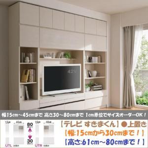 テレビ すきまくん 上置 LSK-UTL R 日本製 幅15cm-30cm 高さ61cm-80cm|kagu-hiraka