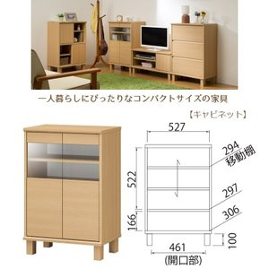 ネオスタ NEO-8555G キャビネット 木製 コンパクトサイズ 一人暮らし 組立品|kagu-hiraka