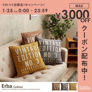 Erba Cushionナチュラル シンプル 45×49 大き目 おしゃれ 北欧 kagu350