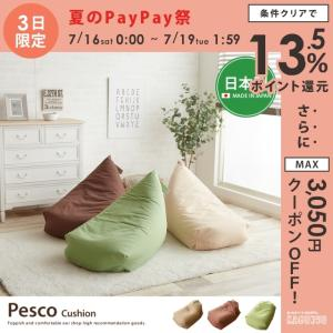 Pesco ぺスコ エコ ビーズクッション ソファ 省スペース|kagu350