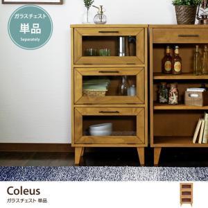 Coleus|kagu350