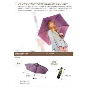傘 かさ カサ ブランド 50cm アンブレラ グラスファーバー|kagu350|02