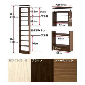 本棚 耐震本棚 突っ張り 転倒防止 壁面収納 薄型 幅60 奥行26|kagudoki|18