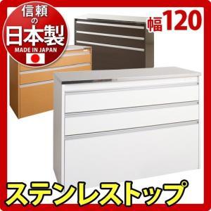 キッチンカウンター 日本製 完成品 ステンレス 幅120cm kagudoki