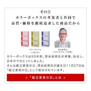 本棚 書棚 A4 CD コミック 収納 カラーボックス 9018 幅90|kagudoki|04