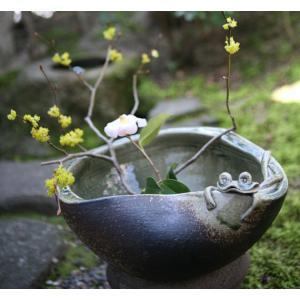 水鉢 ガーデニング 信楽焼 陶器 めだか鉢 家具|kaguemon