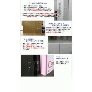 壁面収納 幅60 奥行24.5 高さ55(扉の高さ60) Dタイプ リビング収納 キッチン収納 本収納 AV収納 壁面収納 つっぱり|kagufactory|03