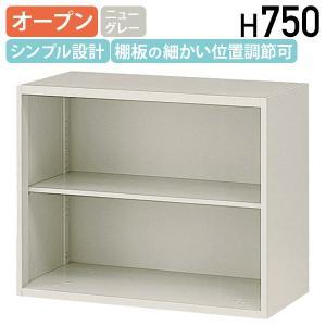 オープン書庫 W900 D450 H750 スチール書庫 スチール書棚 オフィス書庫 オフィス書棚 システム収納庫 代引不可 858815 法人宛限定|kagukuro