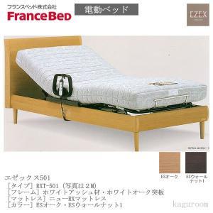 フランスベッド FranceBed 電動ベッド(フレーム+専用マットレス) エゼックス2モーター L501 2M+ニューRXマットレス シングルサイズ  |kaguroom