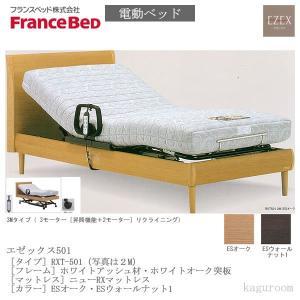 フランスベッド FranceBed 電動ベッド(フレーム+専用マットレス) エゼックス3モーター L501 3M+ニューRXマットレス セミダブルサイズ|kaguroom