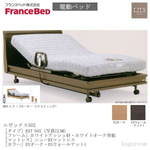 フランスベッド FranceBed 電動ベッド(フレーム+専用マットレス) エゼックス2モーター L502 2M+ニューRXマットレス セミダブルサイズ|kaguroom