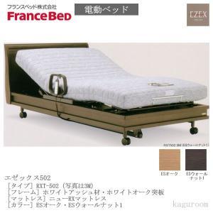 フランスベッド FranceBed 電動ベッド(フレーム+専用マットレス) エゼックス3モーター L502 3M+ニューRXマットレス セミダブルサイズ|kaguroom