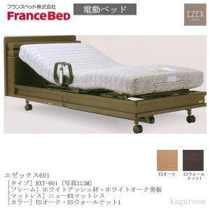 フランスベッド FranceBed 電動ベッド(フレーム+専用マットレス) エゼックス3モーター L601 3M+ニューRXマットレス シングルサイズ  |kaguroom