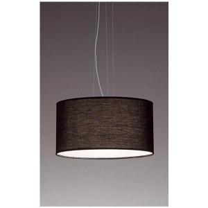 和風天井照明器具ナチュラルモダンペンダント 照明ランプ ブラックLEDランプ照明  ERP7194B|kaguselect-com