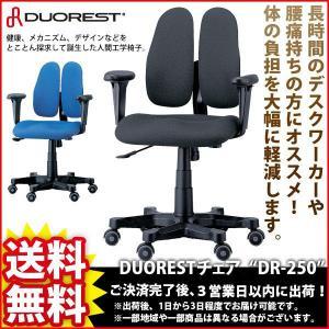 デスクチェア『DUORESTチェア DR-250』|kaguto