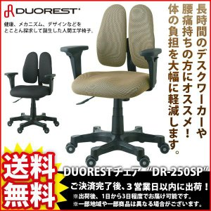 デスクチェア DUORESTチェア DR-250SP|kaguto