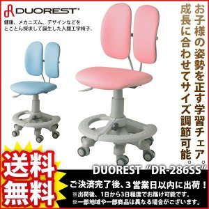 デスクチェア『DUORESTチェア DR-286SS』|kaguto