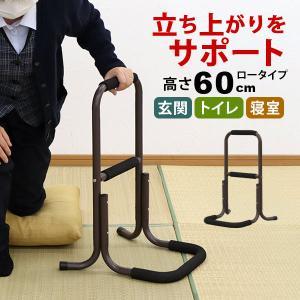 立ち上がり補助手すり 立ち上がりサポートスタンド ロータイプ60cm 手摺り|kaguto