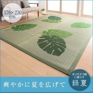 モンステラ柄い草ラグ  緑夏  りょくか 176×230cm kaguya-kaguya