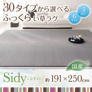 30タイプから選べる国産ふっくらい草ラグ Sidy シディ 191×250cm kaguya-kaguya