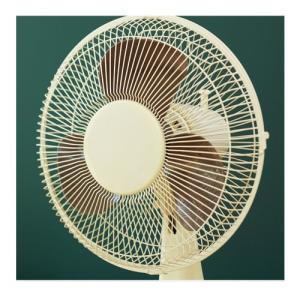 リビングファン 扇風機 コンパクト扇風機 首振り コンセント 小型 卓上 リビング 和室 家電 レトロ インテリア おしゃれ kaguya 12