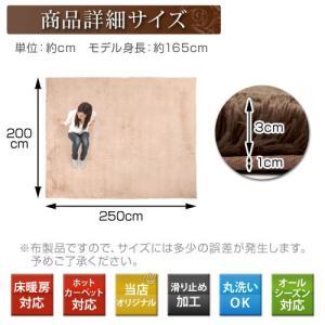 ラグマット おしゃれ 洗える シャギーラグ カーペット ラグ マット 床暖房 ホットカーペット対応 6畳 六畳用 長方形 200×250cm|kaguya|05