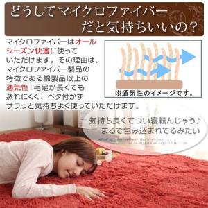 ラグマット おしゃれ 洗える シャギーラグ カーペット ラグ マット 床暖房 ホットカーペット対応 6畳 六畳用 長方形 200×250cm|kaguya|06