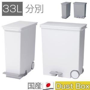 分別ダストBOX 33l ゴミ箱 ごみ箱 ダストボックス 大容量 スリム 四角 キャスター 国産 日...
