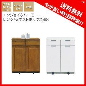 ダストボックス キッチンカウンター レンジ台 2分別 家具 好きにも人気|kaguyatai