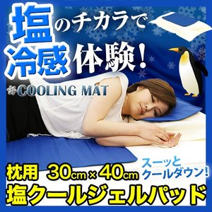 塩クールジェルパッド枕用 30cm×40cm kaguzanmai01