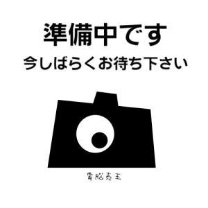 神田無線電気 KWA-HC2300K apro 綿カーボンヒーター 300W ブラック