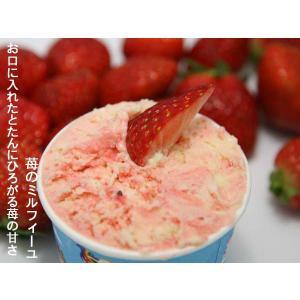 アイスクリーム業務用ハーフサイズ  いちごのミルフィーユ|kaigelato|02