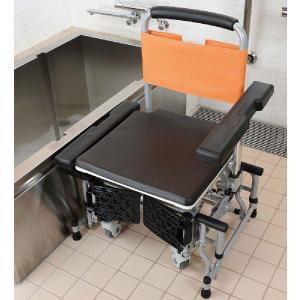 シャワーキャリー お風呂・入浴用車椅子 可動式入浴台 アクアムーブ PN-L 14001D 施設向け|kaigo-scrio