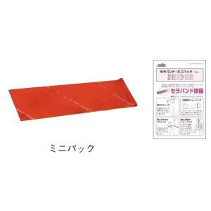セラバンド ミニパック 1.5m (赤・中弱) T131-00 初めて試されたい方に リハビリ 手術...