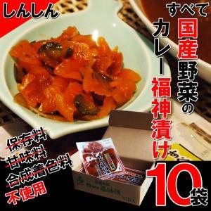 しんしん すべて国産野菜のカレー福神漬 110g×10袋 鉄腕DASH 鉄腕 ダッシュ DASH|kaigunsan