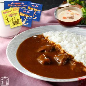 よこすか海軍カレー ネイビーブルー 4食×黒船シチュー2食セット(6食分)
