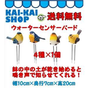 ウォーターセンサーバード 【4種×1個】 オブジェ・オーナメント・置物|kaikai-shop