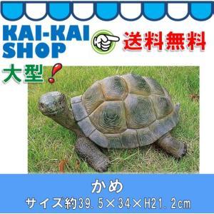 かめ ビッグサイズ 高さ約21.2cm ポリレジン製|kaikai-shop
