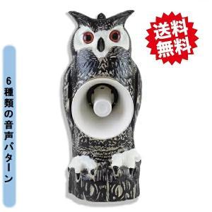 送料無料 タイガー 新天敵ニラミ トリサッタ2 TTS−DSC4 大好評 鳥害対策 鳥害防止装置 断末魔の悲鳴音|kaikai-shop