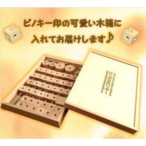数量限定1セット 穴のある手作り組み木(つみ木)ピノキー 67ピース kaikai-shop