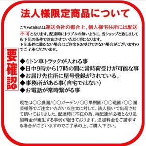 イボ付き園芸支柱  11mm×1800mm  100本入り 十字キャップ別売り|kaikai-shop|02