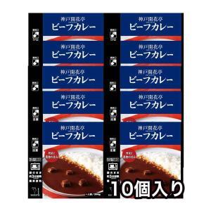レトルト ビーフ カレー 10個 神戸開花亭 自宅用 セット 食品 おかず 送料無料 一部地域は追加送料あり のし・包装不可|kaikatei