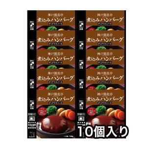 レトルト 煮込み ハンバーグ デミグラスソース 10個 神戸開花亭 自宅用 セット 食品 おかず のし・包装不可|kaikatei